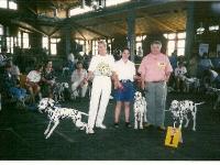 beste-zuchtgruppe-clubsiegerschau-1995-1-europa-dalmatinerschau-richterh-de-ridder